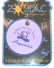 Zodiac Keychain Enesco Aquarius Key Chain