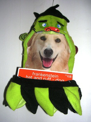 Dog Pet Costume Hat and Ruff Frankenstein